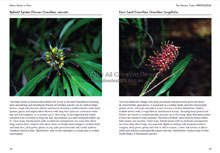 Green Guide Trees Of Australia Book Sample Page 2