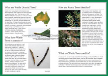 Green Guide Trees Of Australia Book Sample Page 3