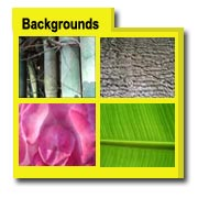 Background Photos, Background Images