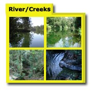 River & Creek Photos, Creek Images