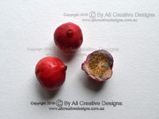 Red Apple Syzygium ingens Fruit