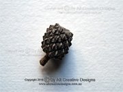 Black She-oak, Cone, Allocasuarina littoralis